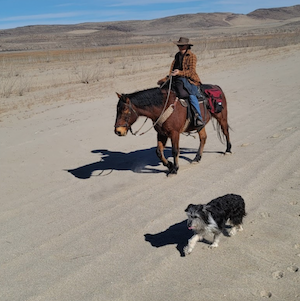 Nevada Discovery Ride Hits the Trail Again